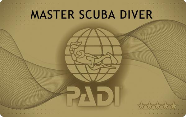 PADI MSDカード